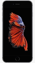 iPhone 6s Plus 32GB - Space Gray